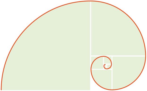 Eine Spirale, die sich aus der Fibonacci-Zahlenfolge ergibt.