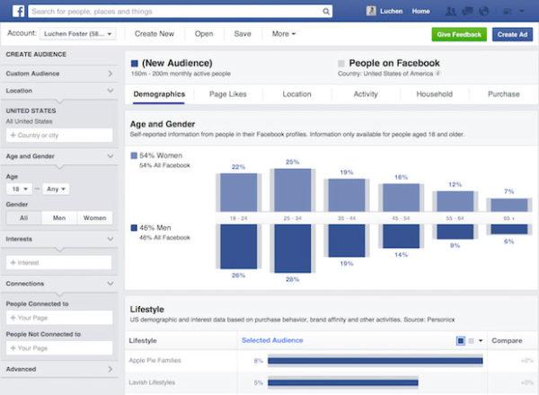 Grafiken der Statistik der Facebook ADs als Insights über Deine Nutzer.